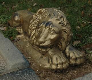 DSC_7188edited lion